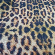 Animal print Tigre 2